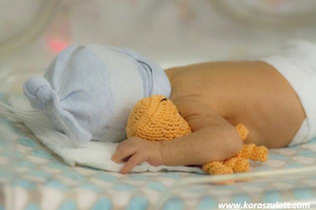 chameleon aid korip inkubatorban - Kézzel készített baba-mama kiegészítők, ajándékok - Baby Chameleon